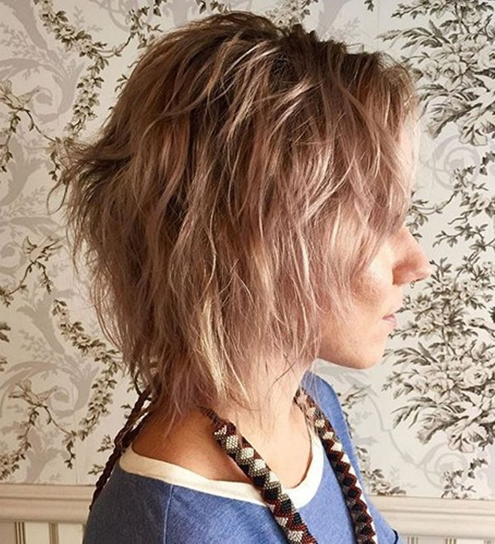 22 Cool Shag Hairstyles for Fine Hair 2018-2019 | Page 2 of 8