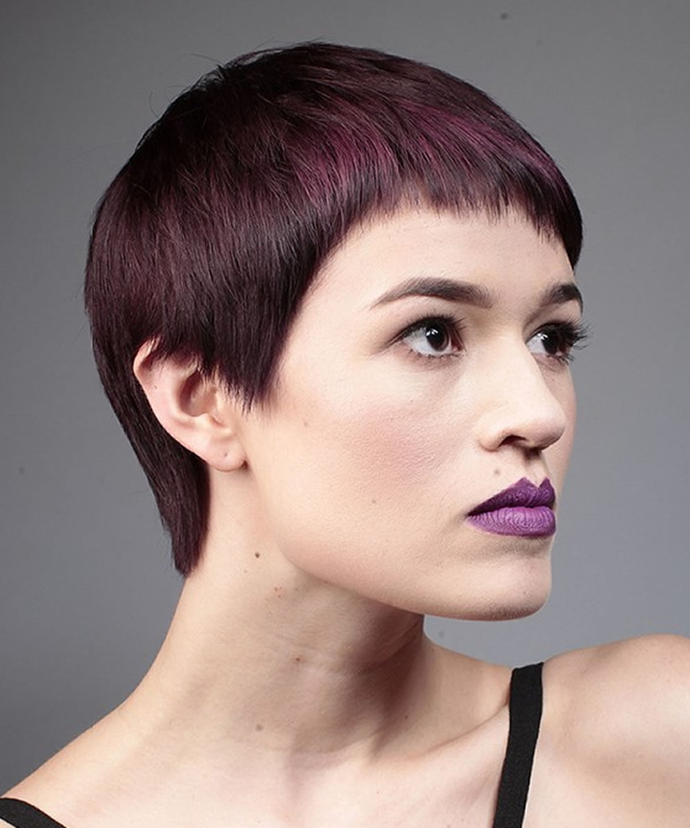 Short 2018 Pixie Haircuts & Amp Hairstyles Colors And Ideas