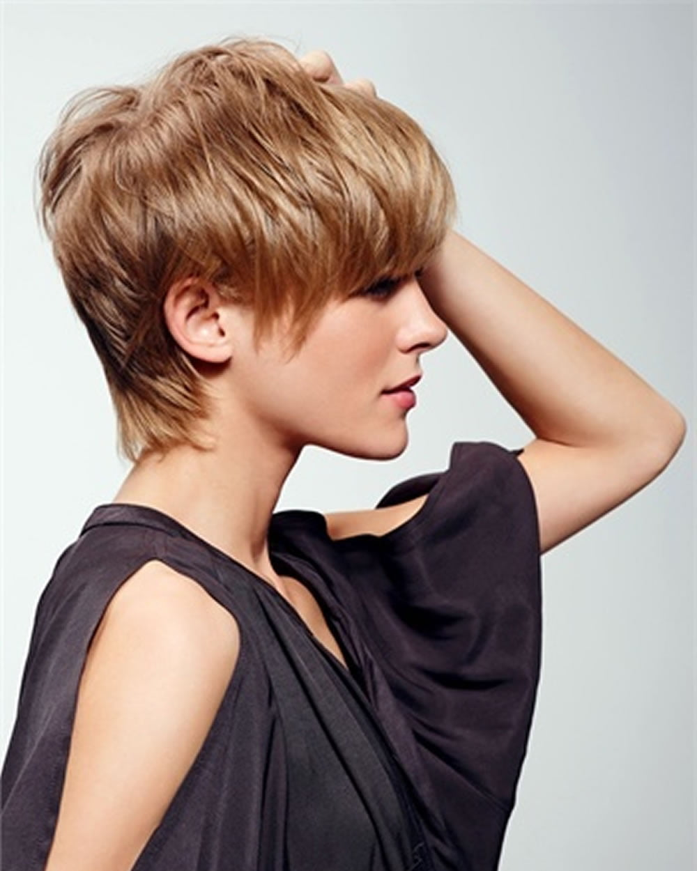 The Latest 25 Ravishing Short Hairstyles and Colors You - Hairstyles For Fine Straight Hair
