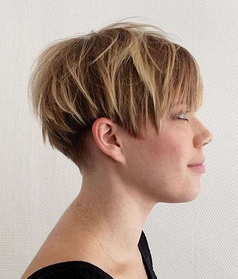 Overwhelming Short Choppy Haircuts For 2018 2019 Bob Pixie Hair Page 6 Hairstyles