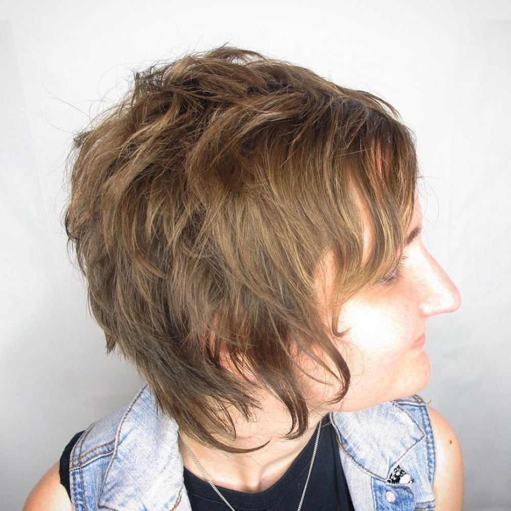 Short Bob Hair Pixie Haircuts Fine