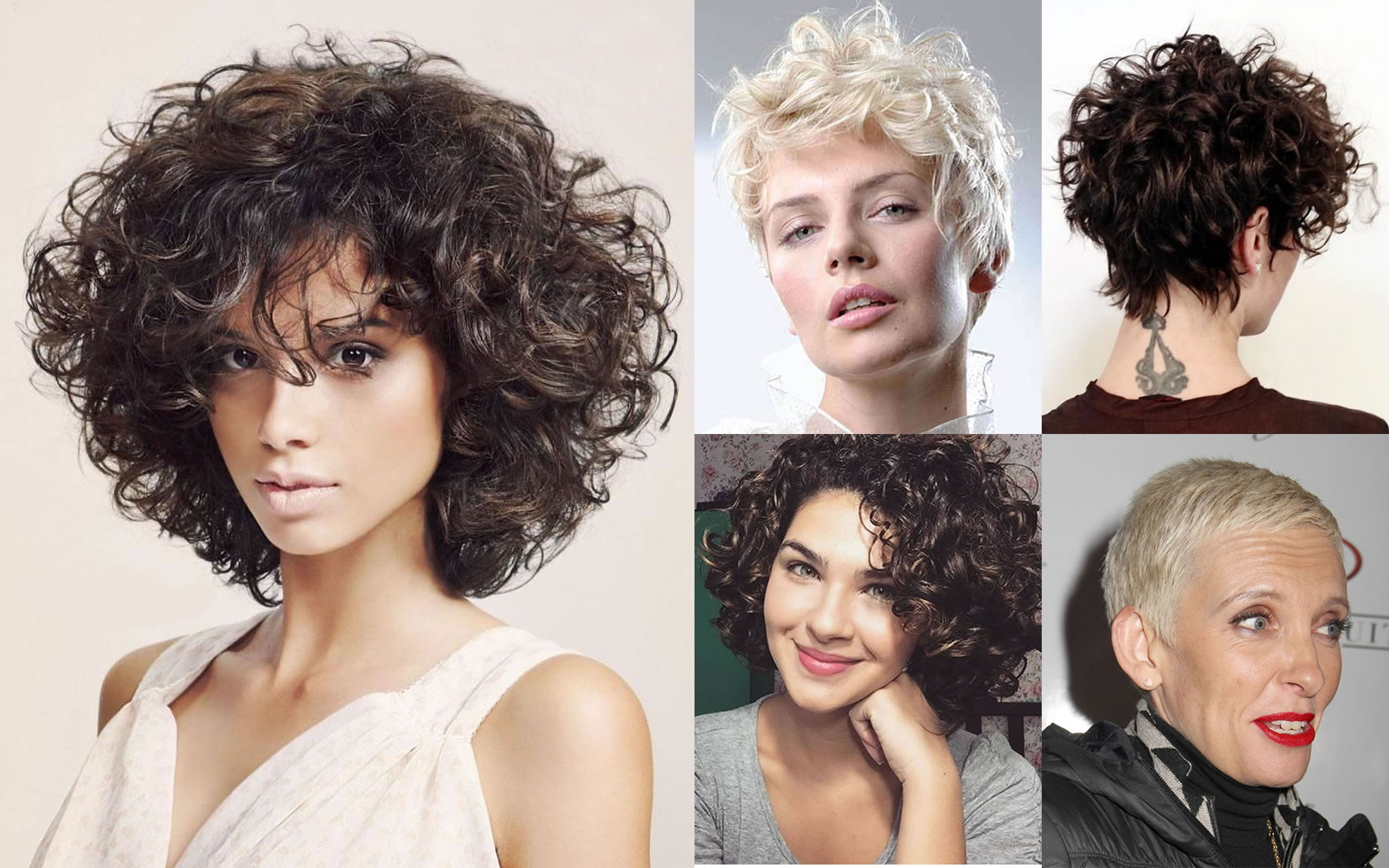 Short Hairstyles 2019 Wavy Hair: Short Curly Haircuts For Every Face Shapes 2018-2019