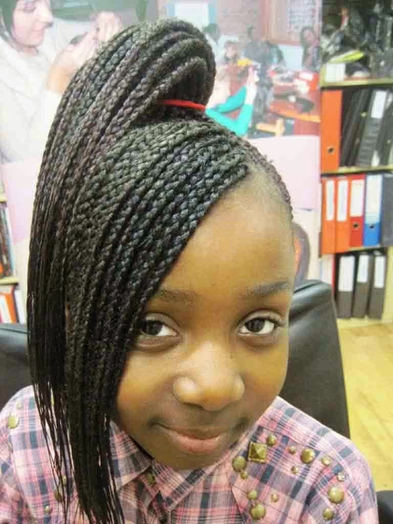 2017 Long Braided Hairstyles for little black girl