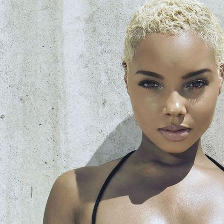 Snazzy Very Short Gray Haircuts For Black Women Hairstyles