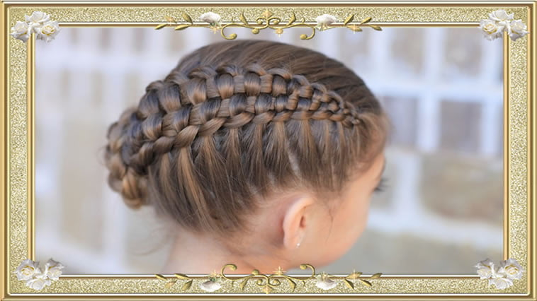 Braid Long Hair Styles