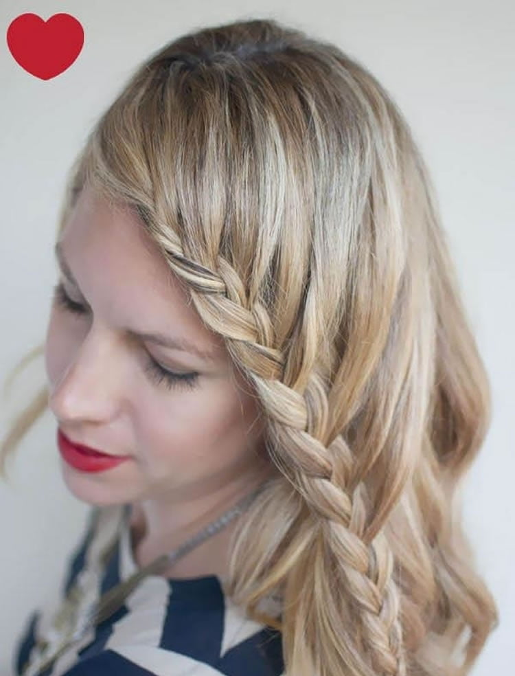Plaits for long hair styles 2017