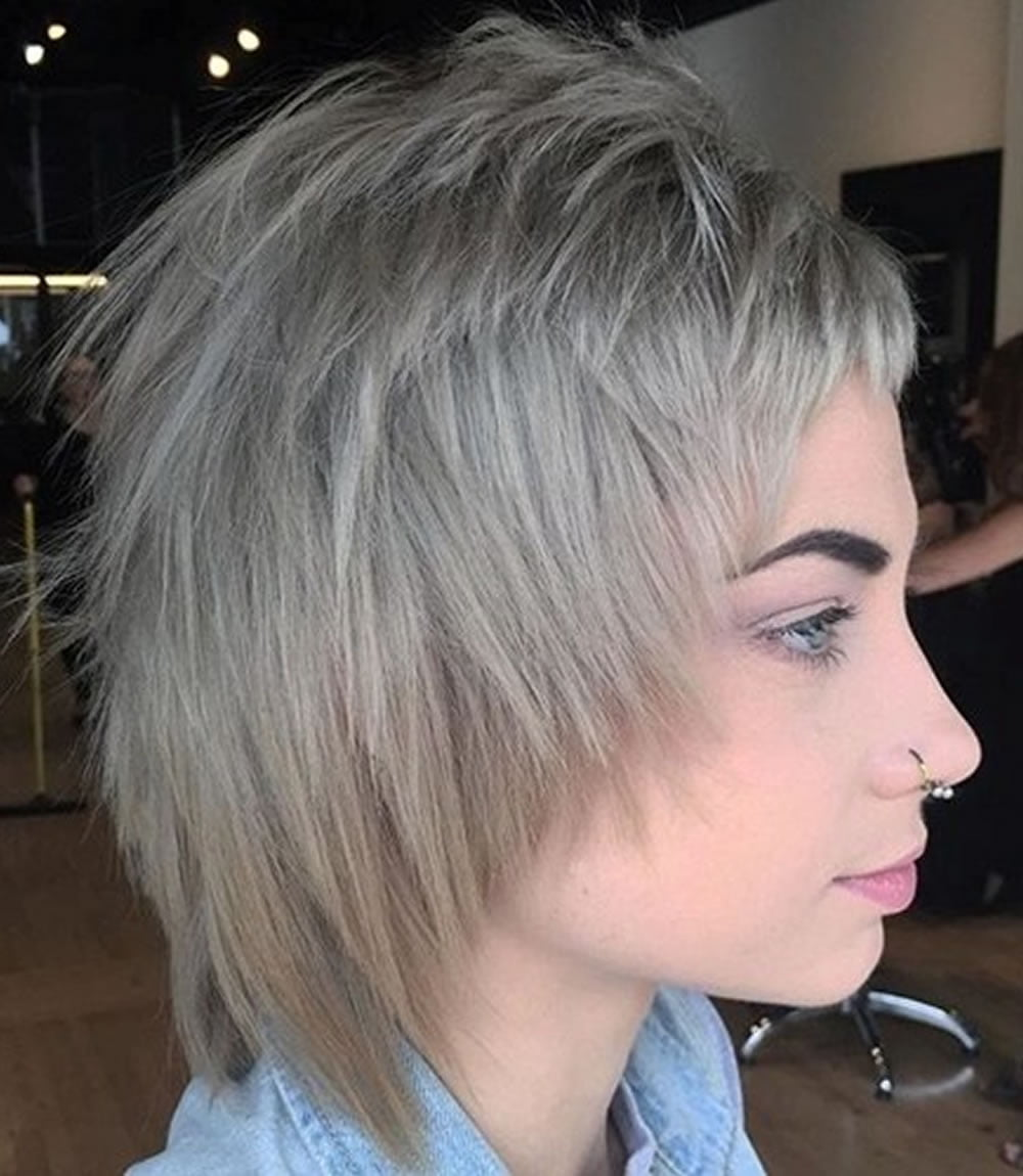 22 Cool Shag Hairstyles For Fine Hair 2018-2019
